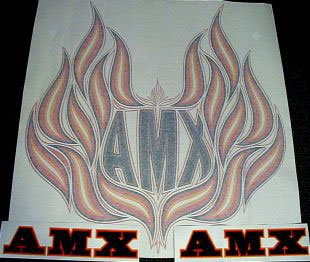 amc spirit amx b