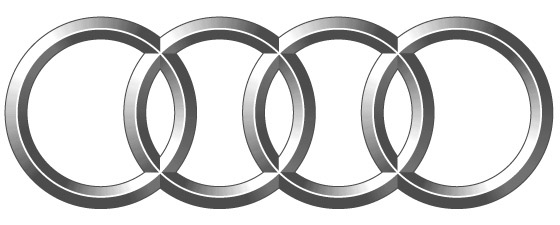 types of vehicles and systems functioning  audi fox
