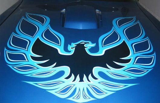 Pontiac Firebird Hood Decal Cartype