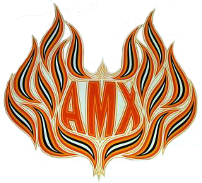 amc spirit amx hood decal 79 80