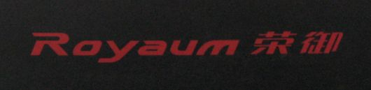 buick royaum logo china
