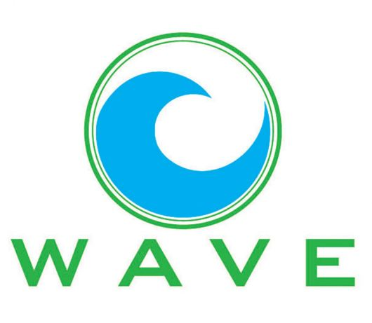 li ion wave ii logo 11