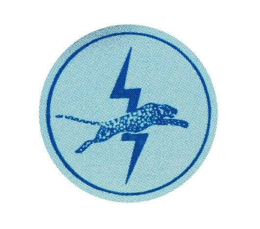 us electric lectric leaport icon