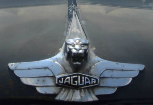 jaguar old hood emblem