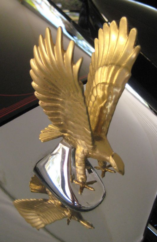 Zimmer Related Hood Ornaments Cartype
