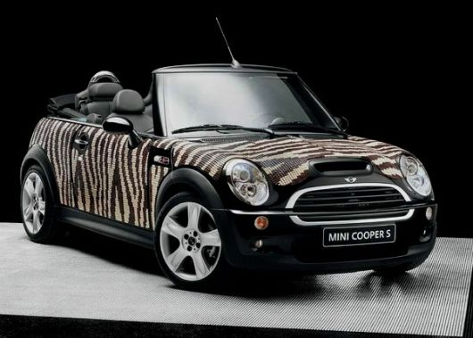 mini bisazza 2