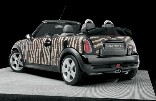 mini bisazza 3