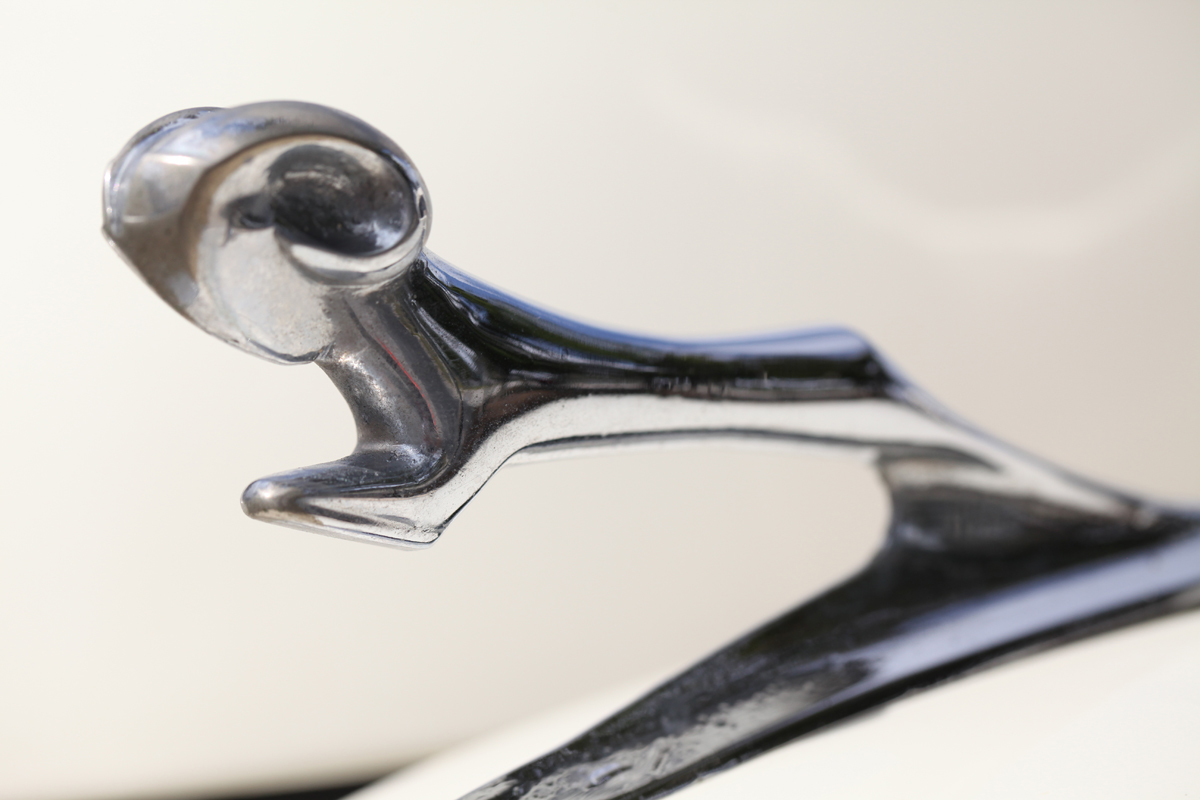 Dodge Door Hood Ornament